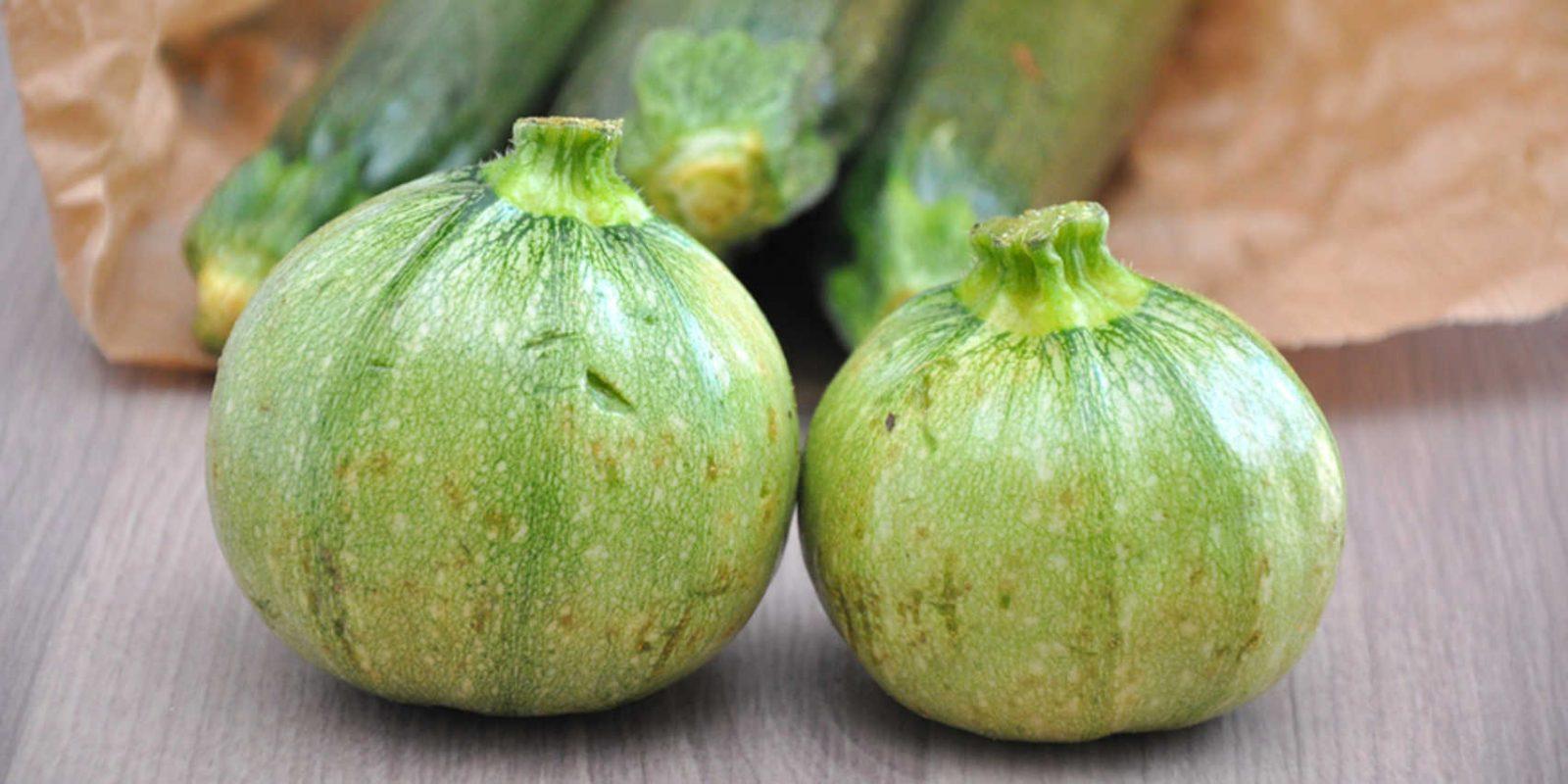 Finger weg von bitteren Zucchinis!