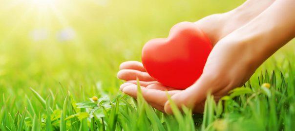 Kalium und Magnesium: Elektrolyt-Balance für die Herzgesundheit
